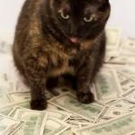 Что такое деньги в жизни человека?